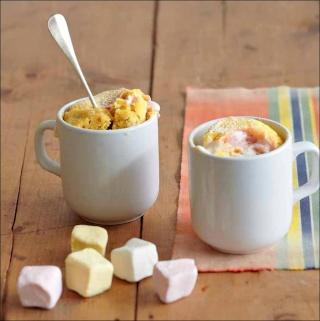 Les Mugs Cakes Mug_ca11