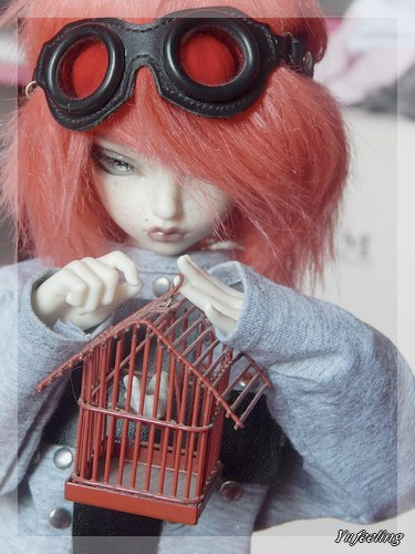 ~ SuShI Photo Solo ~ [MNF Rheia] P.5~ Cage10