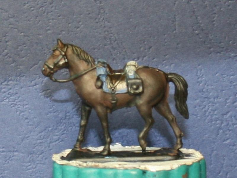 Fellschattierung eines Pferdes auf einfache Art Img_0617
