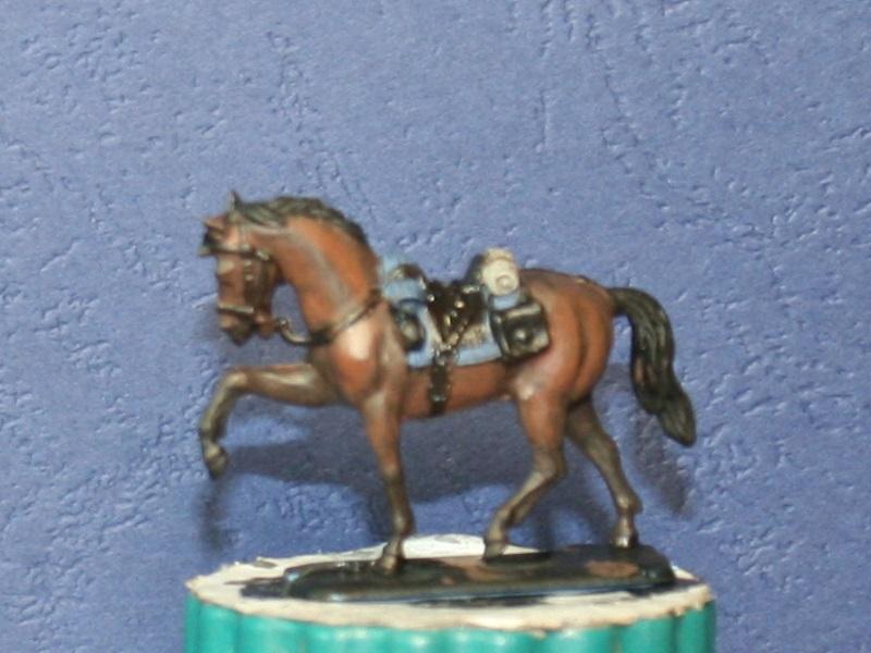 Fellschattierung eines Pferdes auf einfache Art Img_0619