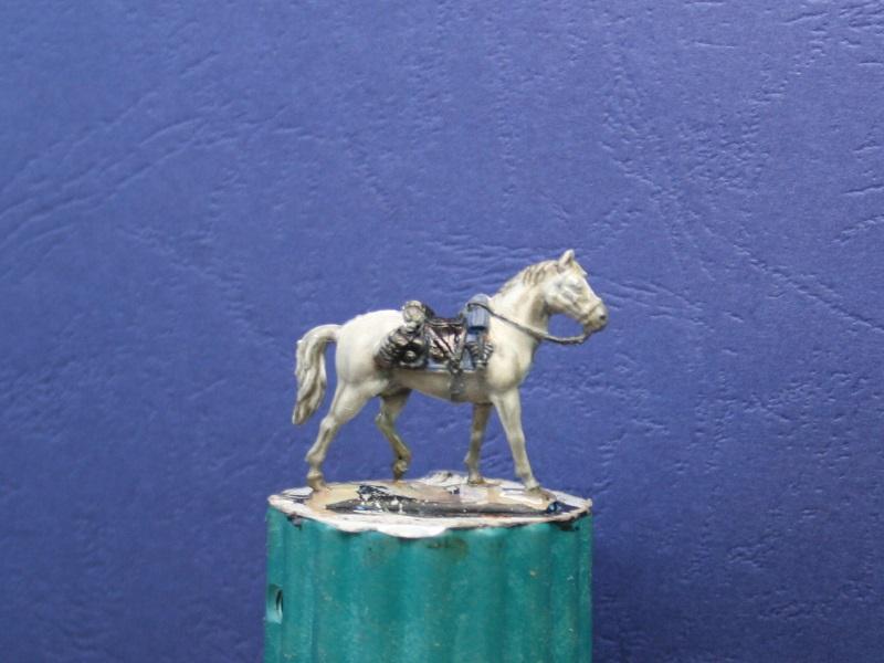 Fellschattierung eines Pferdes auf einfache Art Img_0620