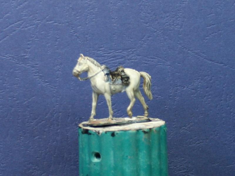 Fellschattierung eines Pferdes auf einfache Art Img_0710
