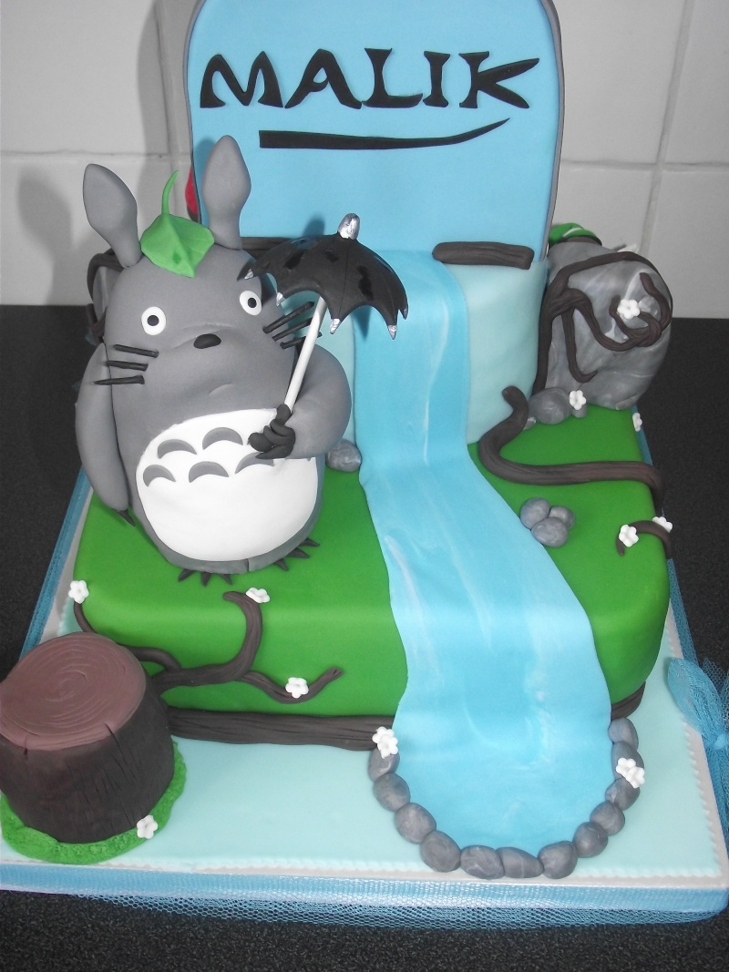 Totoro - Page 4 Dscf4011