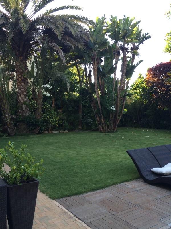 Mon jardin tropical a Casablanca 210