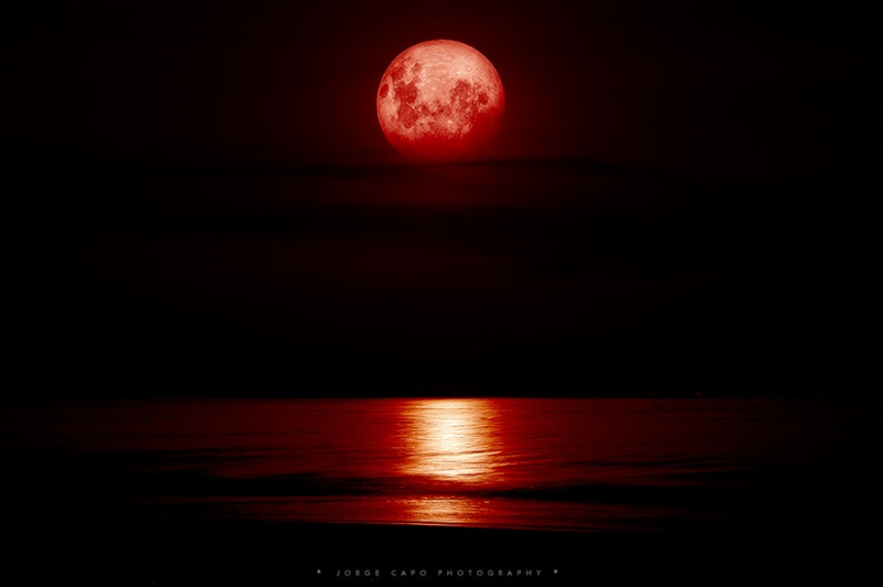 Blood Moon Are you going to watch it? 410