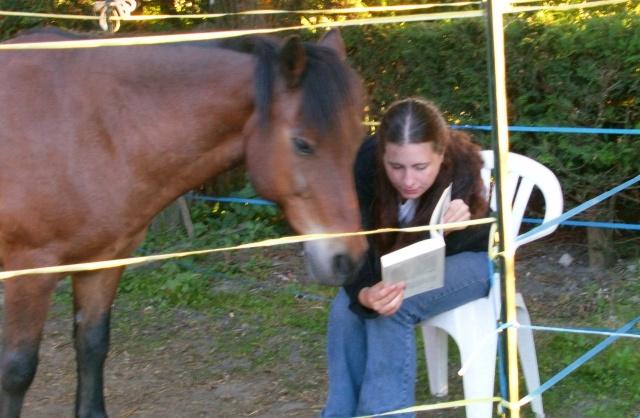 LEON - ONC poney né en 2000 - adopté en mars 2014 par Bilby - Page 2 File1214