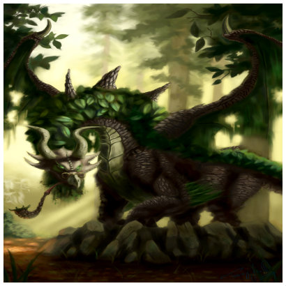 The Dragon Guide Forest10