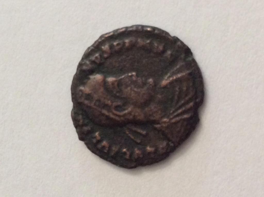 id petite romaine 05919
