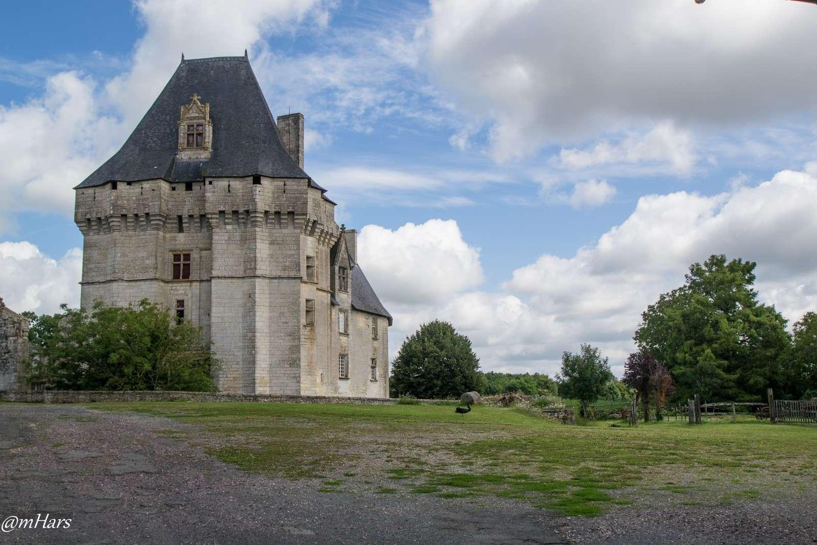 Château de Cherveux, dans les Deux-Sèvres. 2014-049