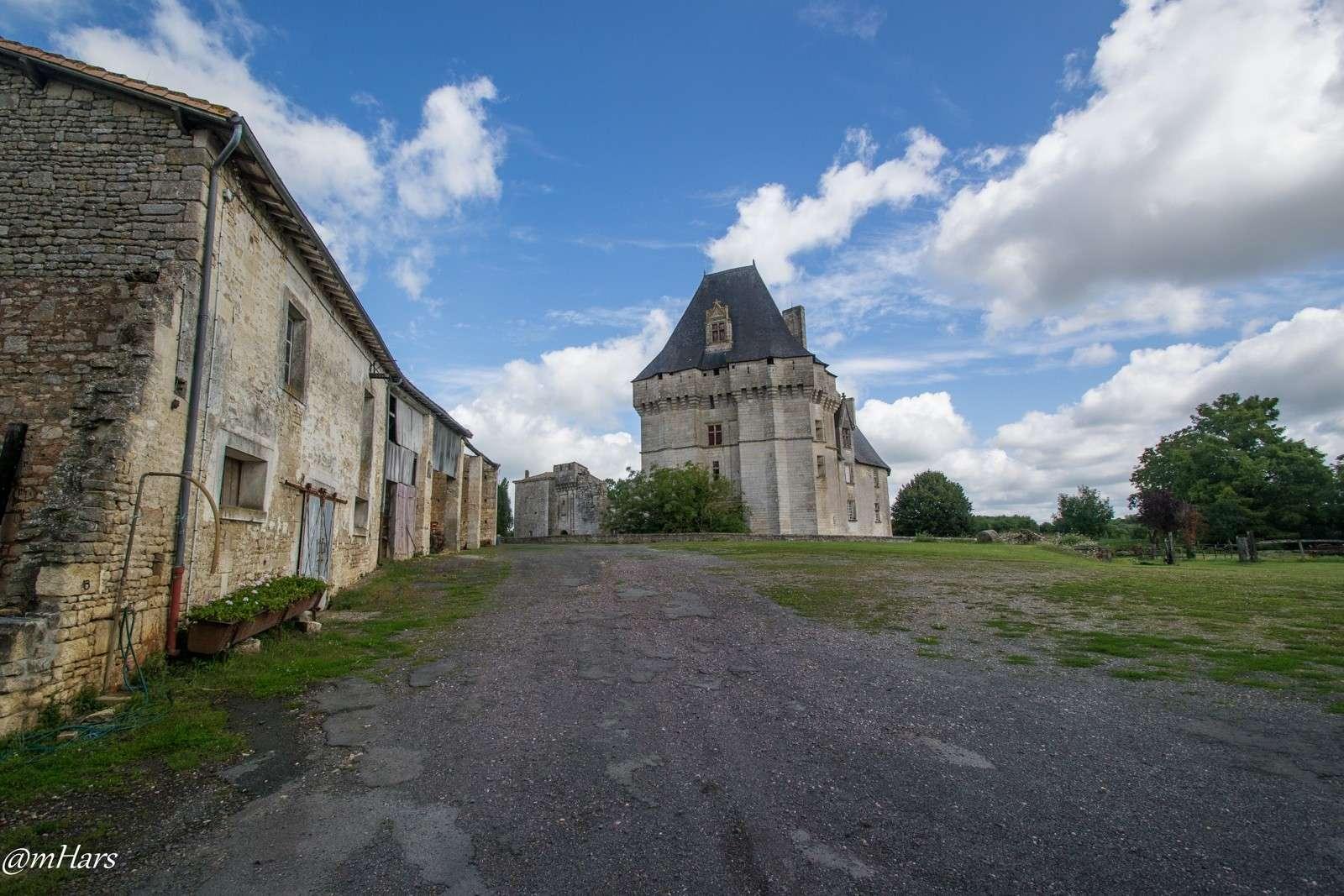 Château de Cherveux, dans les Deux-Sèvres. 2014-050