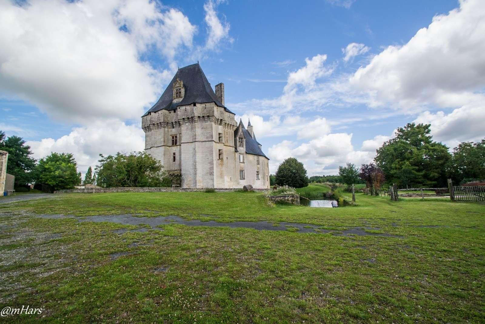 Château de Cherveux, dans les Deux-Sèvres. 2014-051