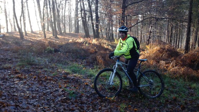 [16 Nov. 2014] Sortie forêt de Roumare 8 h 30 Parc Animalier - Page 2 Img_2073