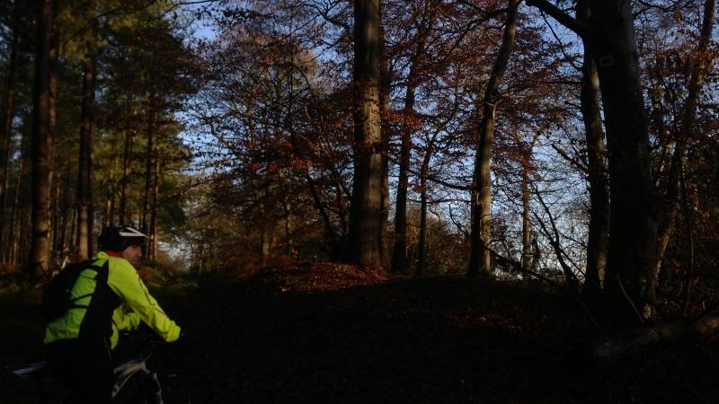 [16 Nov. 2014] Sortie forêt de Roumare 8 h 30 Parc Animalier - Page 2 Img_2075
