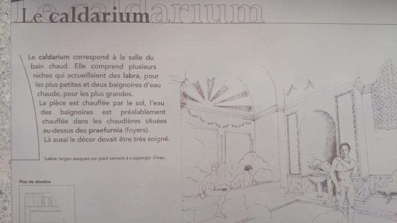 le Fâ, le musée et son site gallo-romain (découverte 3/3) Dsc_0424