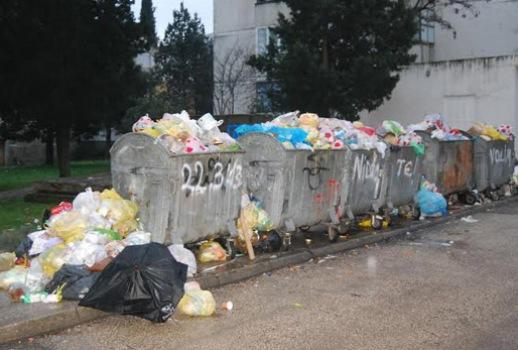 Sve veći problemi sa smećem  Parkov10