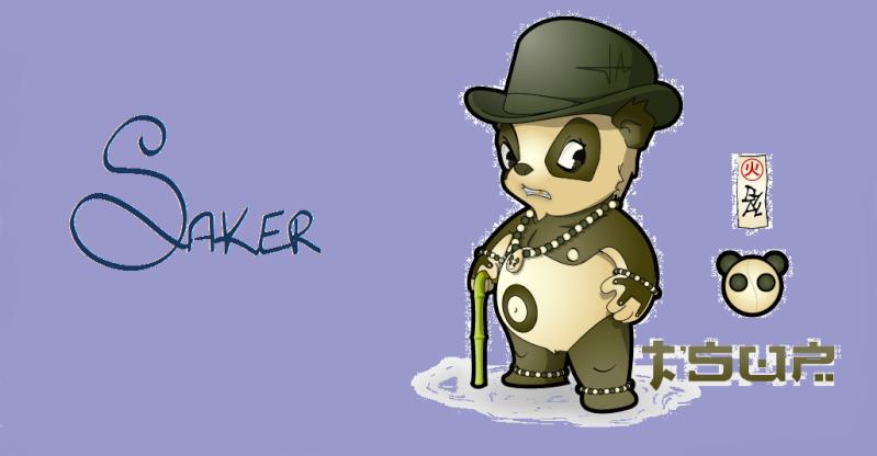 Candidature de Saker Sans_t13
