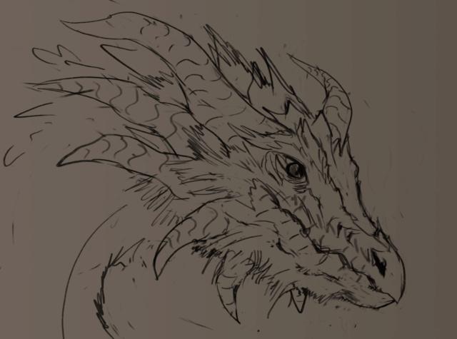 Éle-wip  - Page 32 Dragon32