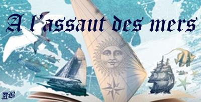 Challenge - A l'Assaut des mers ! A_l_as10