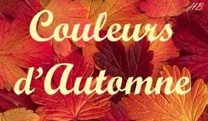 Challenge Couleurs d'Automne - Inscription jusqu'au 10 octobre Feuill11