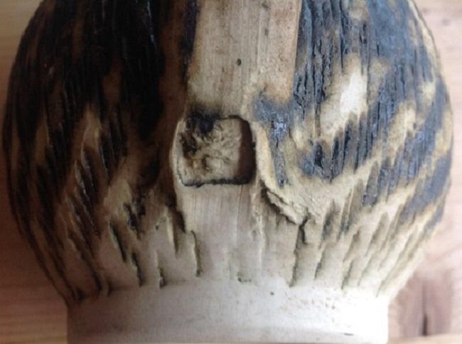 Bristow Pottery, Chillington, Devon Img_0512