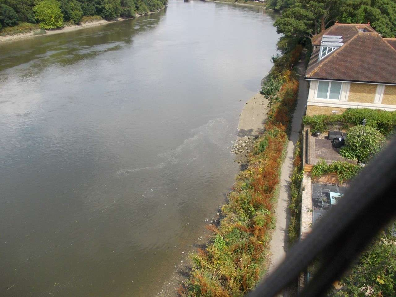 lower at Barnes and Mortlake 2014_010