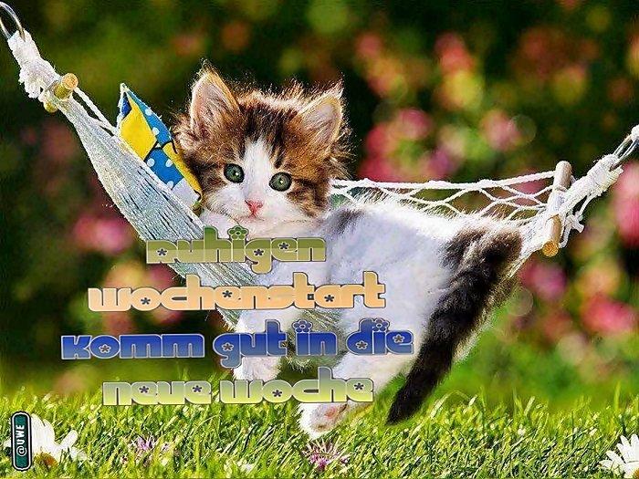 Wochenstart Ve10ks12