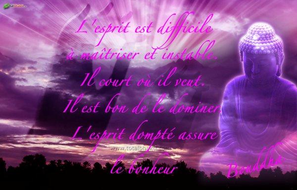 citations de bouddha, que j'aime beaucoup  31289910