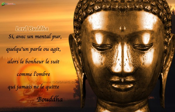 citations de bouddha, que j'aime beaucoup  31295010