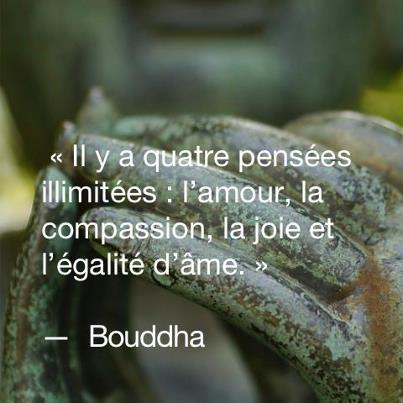 citations de bouddha, que j'aime beaucoup  Aa_bou10