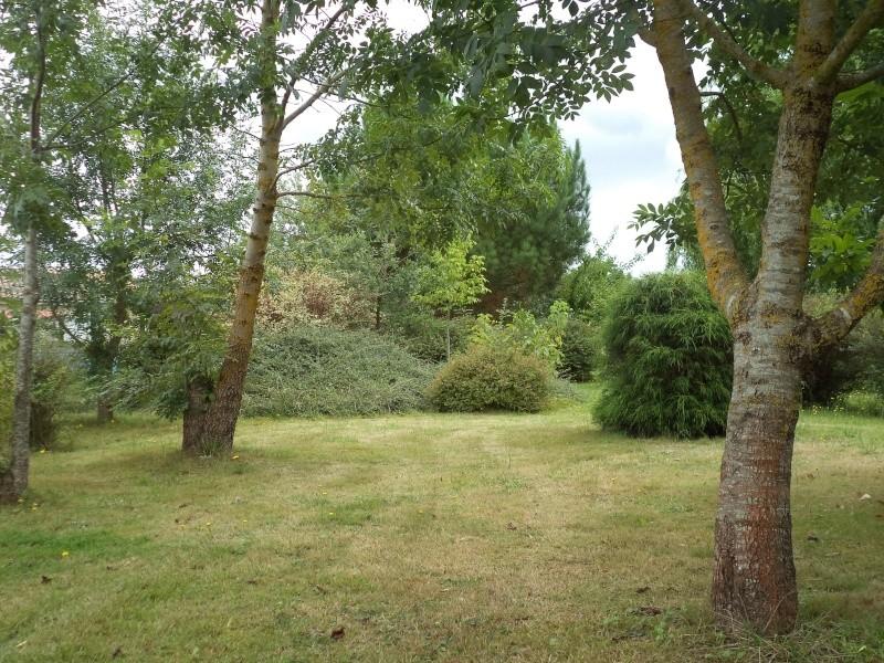 Vues du jardin Dsc00328