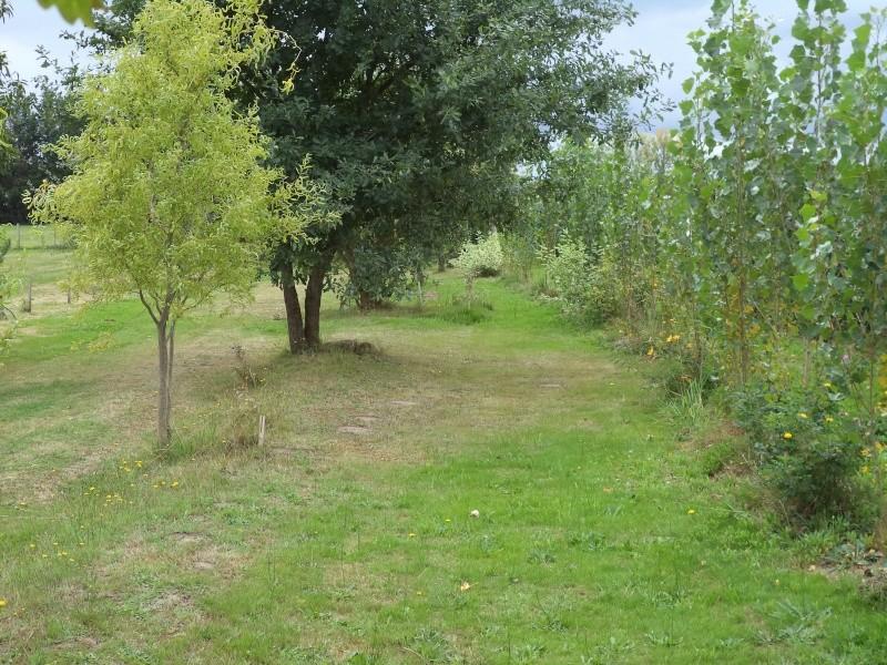 Vues du jardin Dsc00333