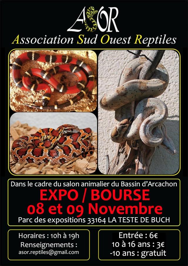 Expo/bourse reptiles ASOR 2014 Affich10