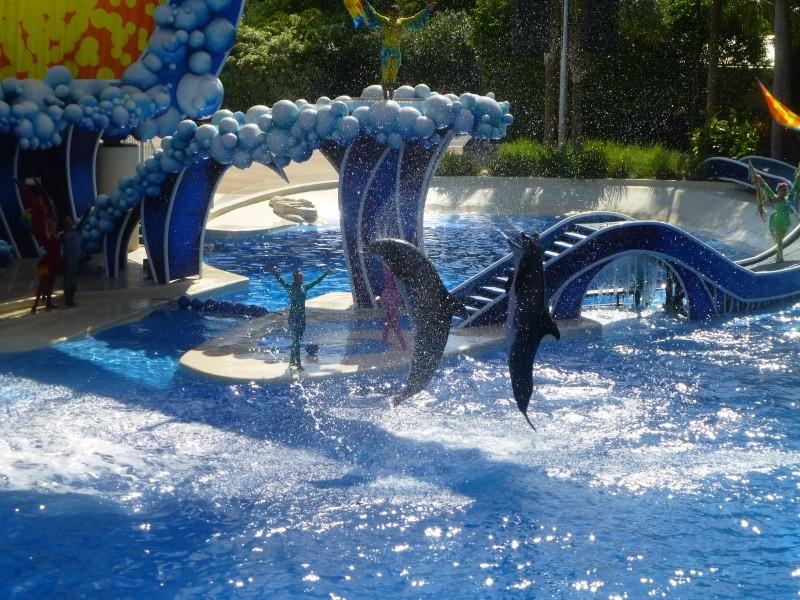 TR terminé: Universal Orlando et Seaworld ou un rêve devenu réalité! P1130116