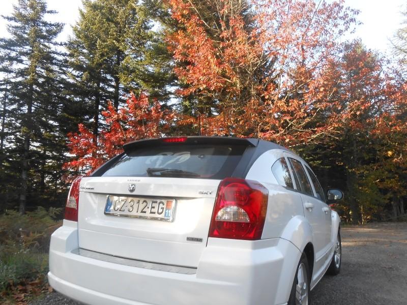 [Concours interne] Photo de saison (automne 2014)  Dscn0414