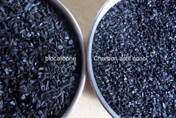 Quel charbon pour quelle pâte : Synthèse Coco_e10
