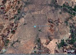 Lions en Inde, Gir Forest, Gujarat - Inde Lion_m10