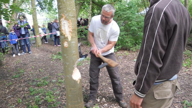 Abattre un arbre comme un homme du néolithique Dscn0510