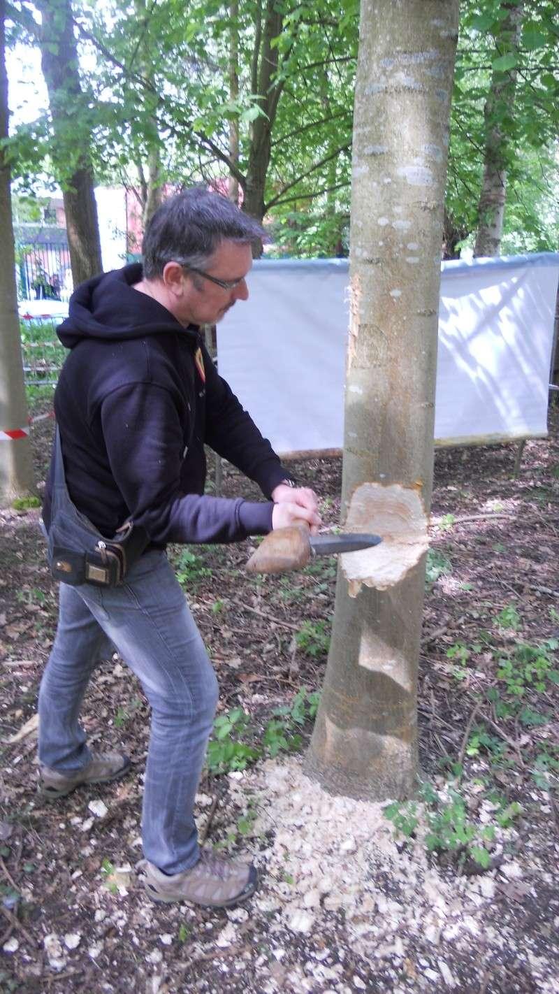 Abattre un arbre comme un homme du néolithique Dscn0512