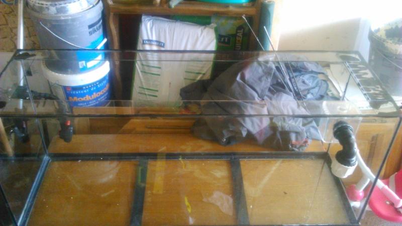 mon nouveau bac 250 litres eau de mer Dsc_0012