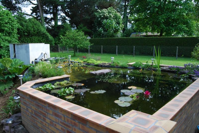 Le bassin hors sol de logan Dsc_3812