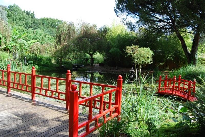 (85) Parc floral et tropical de la Court d'Aron - Saint-Cyr-en-Talmondais Dsc_4713