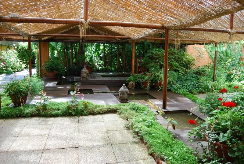 (85) Parc floral et tropical de la Court d'Aron - Saint-Cyr-en-Talmondais Dsc_4811