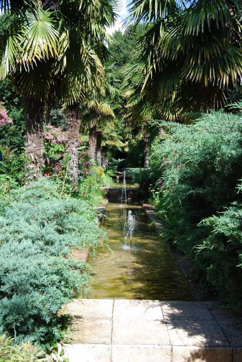 (85) Parc floral et tropical de la Court d'Aron - Saint-Cyr-en-Talmondais Dsc_4812