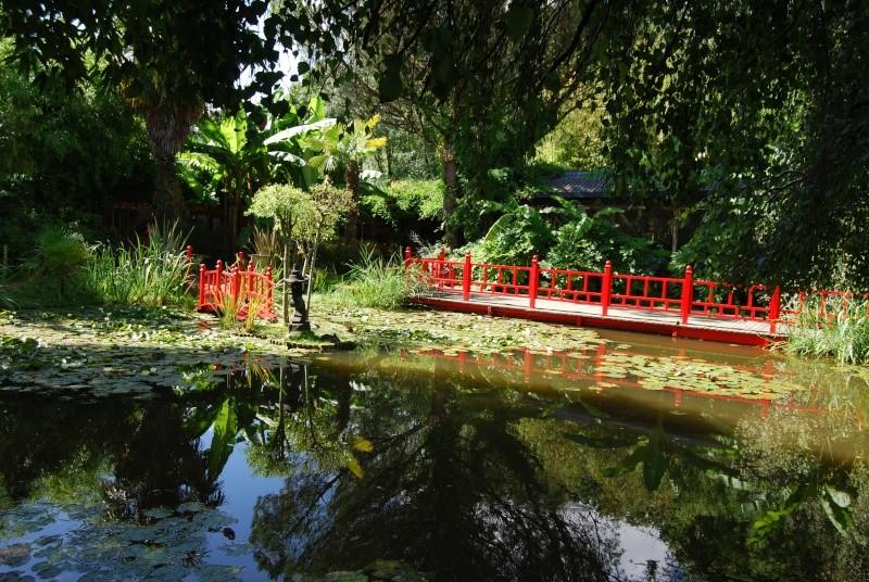 (85) Parc floral et tropical de la Court d'Aron - Saint-Cyr-en-Talmondais Dsc_4813