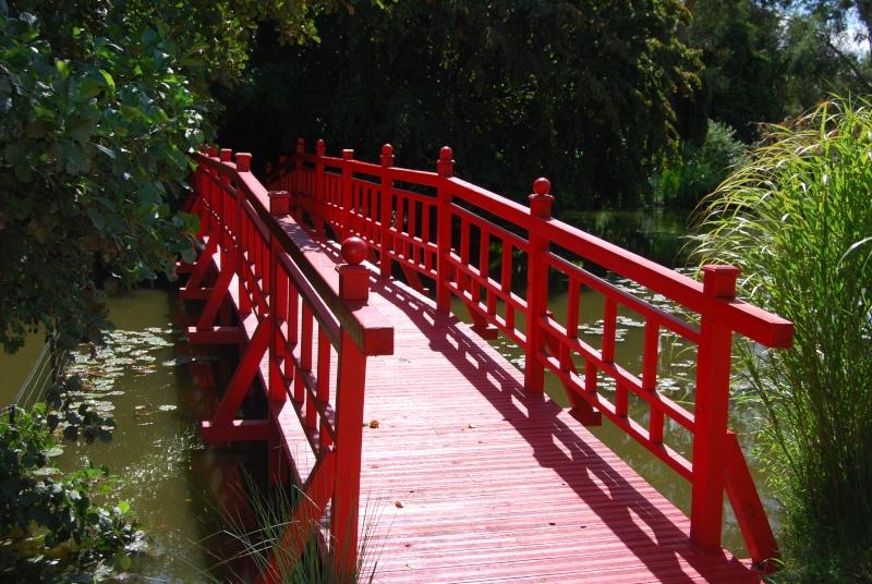 (85) Parc floral et tropical de la Court d'Aron - Saint-Cyr-en-Talmondais Dsc_4814