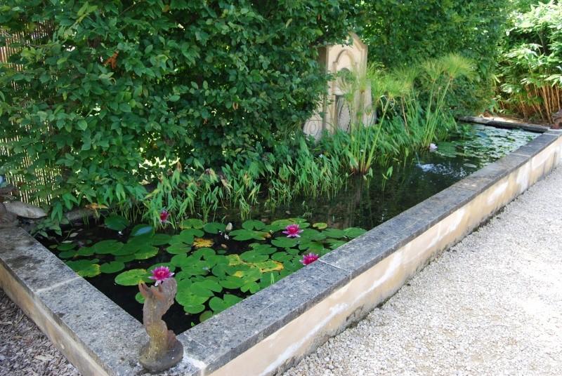 (24) Les Jardins d'Eau - Carsac-Aillac (Sarlat) - Page 2 Dsc_4826