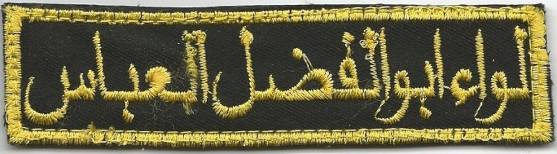 Peace Brigades and Brigades of the Popular Defense patches Bde_ab11
