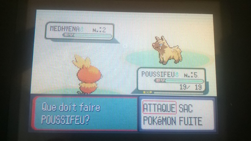 Les shinies fails ! Wp_20110