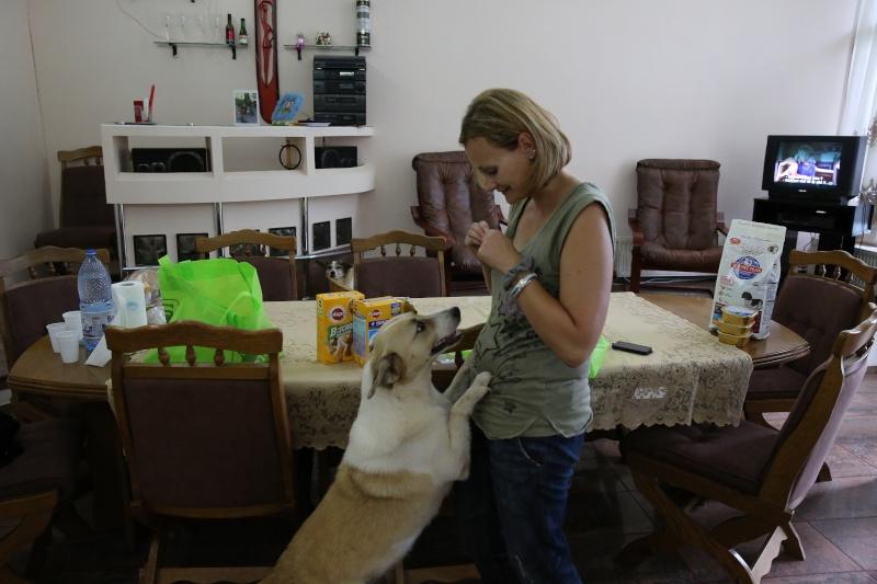 Murmurica, sauvetage de Sanda, chienne née en 2011 Sanda510