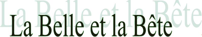 La Belle et la Bête [1991] [F. Anim] Logo_310
